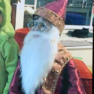 Toddler Dumbledore costume size 3T